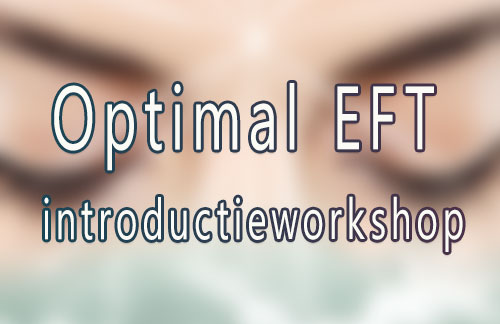 Optimal EFT introductieworkshop
